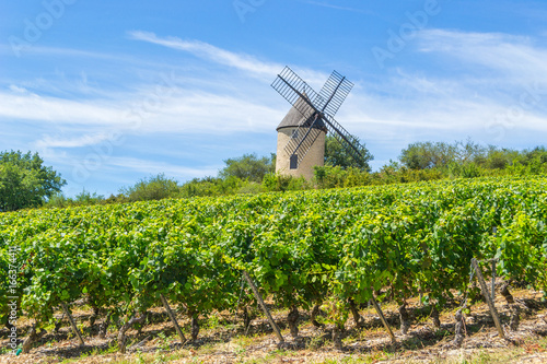 Papiers peints Vignoble Vineyard and Windmill of Santenay, France