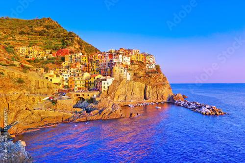 View of the Manarola village along the coastline of Cinque Terre area in Italy Poster