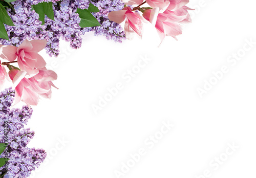 Magnolia and lilac flowers isolated on white background