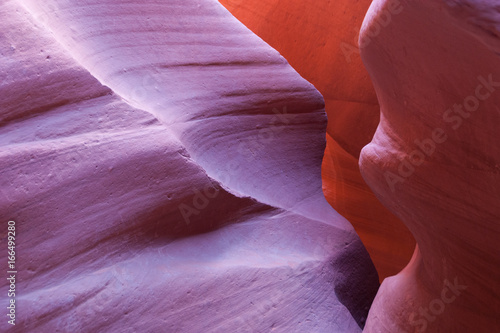 Foto op Canvas Bordeaux canyon Antelope