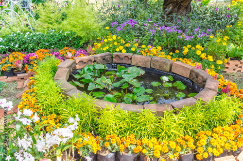 Staande foto Fiets Cozy home garden./ Cozy home flower garden on summer.In home garden.