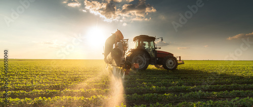 Fototapeta Tractor spraying soybean field at spring