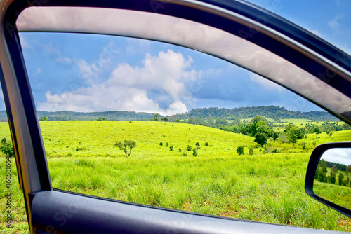Look at the green landscape through the car window