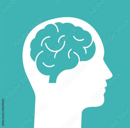 Human head with brain. Head with brain isolated on background. Vector stock. - 166598222
