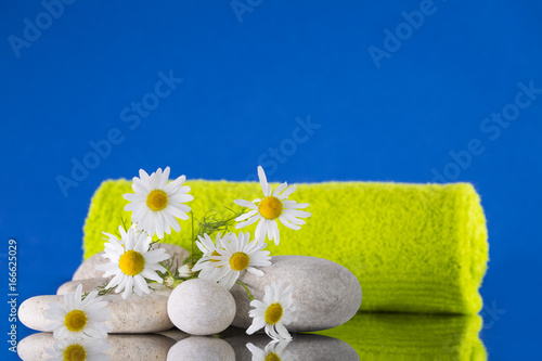 Staande foto Spa Chamomile, pebbles, and a green towel on a blue background.