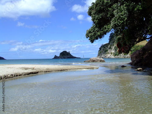 Foto op Canvas Tropical strand Beach, Coromandel