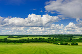 Blue sky with clouds over a green field.