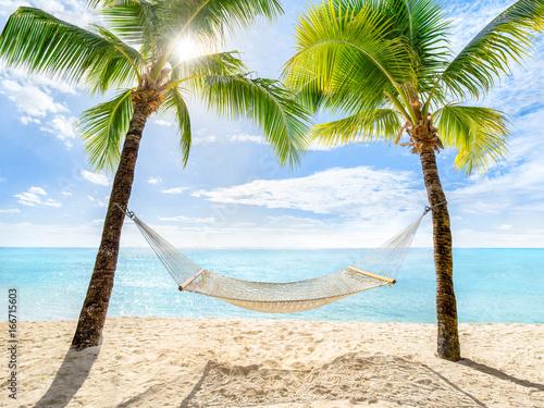 Fototapeta samoprzylepna Urlaub am Palmenstrand mit Sonne und Hängematte