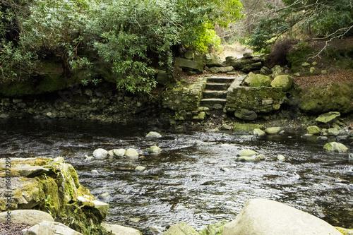 Paysage forestier avec rivière et escalier en pierre lieu de tournage Game of Th Poster