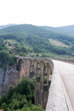 An old bridge over the Tara river
