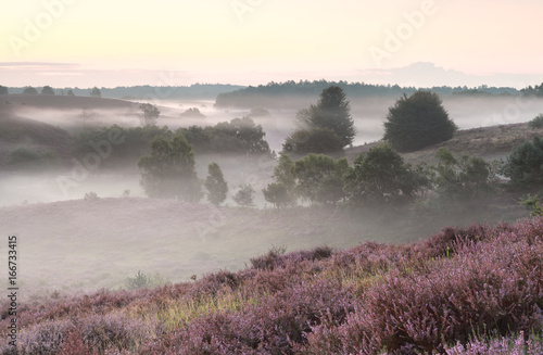 calm summer morning on pink hills - 166733415