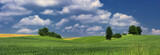Panorama, landscape with fields, trees, greenery and blue sky with white clouds - classic