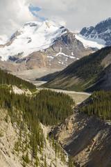 Canadian Rockies © darlenemunro