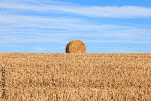 A Hay Bale on the Horizon