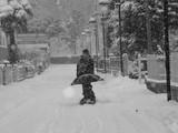 Winter - 166784026
