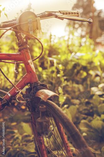 Staande foto Fiets bici vintage