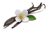 Vanilla sticks with jasmine