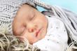 Quadro niedliches Baby schläft