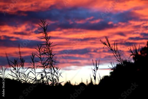 Sonnenuntergang im Biosphärengebiet der Schwäbischen Alb