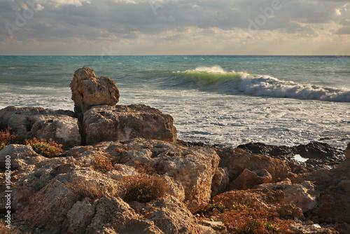 Tuinposter Diepbruine Landscape near Pathos. Cyprus