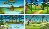 Four scenes of forest and river - 166857860