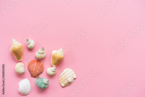 Fotobehang Purper Flat lay design of travel concept with shells on pink pastel background with copy space.