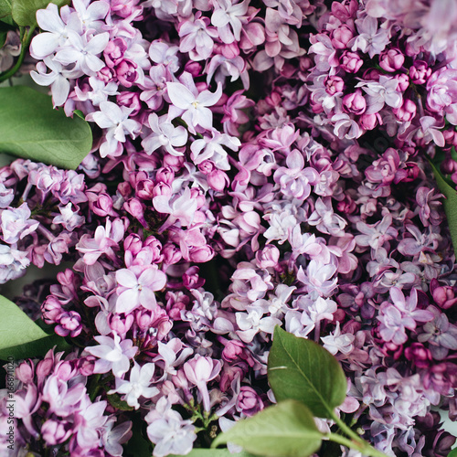 Close-up of purple lilac flowers. Valentine's day or Mother's day background. Flat lay, top view.