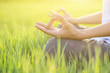close-up for hand woman with yoga posture in the green meadow at sunset; Lotus Yoga.
