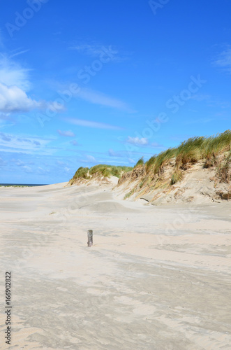 Dünenlandschaft an der Nordsee