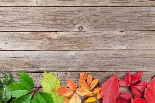 Autumn wooden background - 166917845