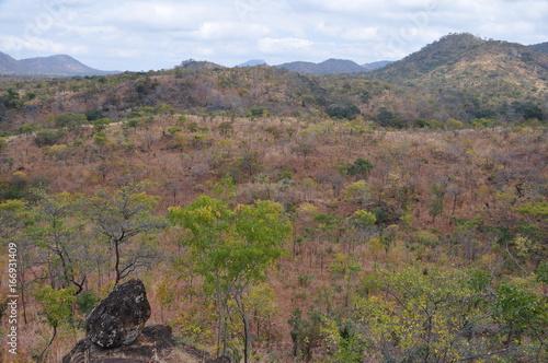The African landscape. Zimbabwe.