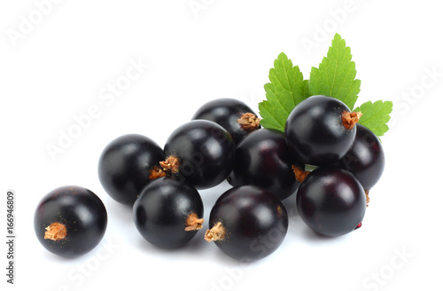 black currant with green leaf isolated on white background - 166946809