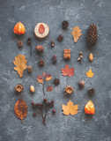Autumn composition. Pattern made of autumn leaves, anise star, pine cones on dark background. Flat lay, top view