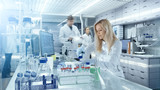 Team of Research Scientists Working With Personal Computer, Analysing Test Trial New Generation Drug Data. They Work in a Modern Laboratory/ Medical Center. - 166977070