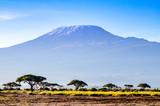 Kilimanjaro w Kenii