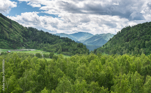 The Altai Mountains. Chemal