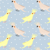 vector seamless pattern with birds parrot corella. little cockatiel. fashion print. - 166996081