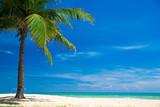beach and tropical sea - 167001013
