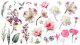 Pink Tropical Collection with plants elements - leaf, flowers. Botanical illustration isolated on white background. watercolor floral nature. Exotic set with  orchid, hibiscus.