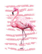 Tropical summer geometric poster design with grunge textures. Watercolor pink bird - flamingo. Exotic Abstract background, vintage. Hand painted illustration. doodles retro
