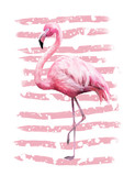 Tropical summer geometric poster design with grunge textures. Watercolor pink bird - flamingo. Exotic Abstract background, vintage. Hand painted illustration. doodles retro - 167009670