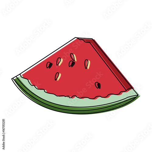 slice watermelon fruit juicy fresh harvest