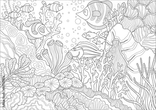 Coral Reef graphic vector illustration