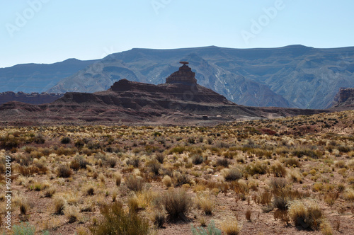 Deurstickers Arizona mexican hat