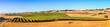 Sonoma County California Wine Country Panoramic