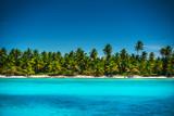 Palm trees on the tropical island beach, Punta Cana
