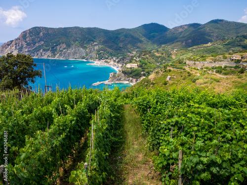 Cinque Terre trail near Monterosso al Mare Poster