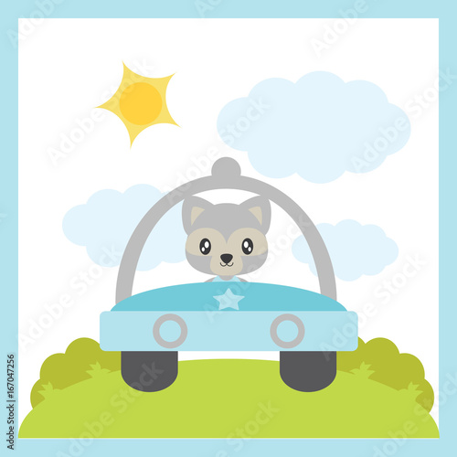 Cute baby raccoon drives a car vector cartoon illustration for baby shower card design, postcard, and wallpaper
