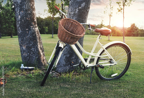 Vintage bicycle with wicker basket parked against tree at sunset