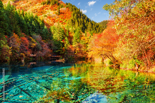 The Five Flower Lake (Multicolored Lake) among autumn forest